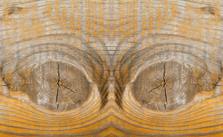become: Wood texture, closeup of photo