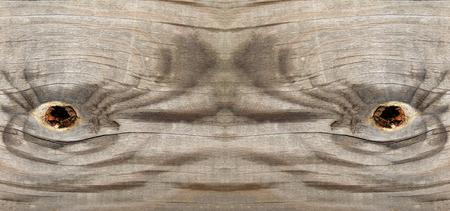 erosion: Wood texture, closeup photo Stock Photo