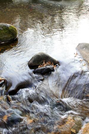 scour: rock and creek, closeup photo