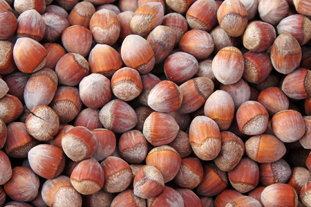 desiccation: hazelnut in a shop, closeup photo