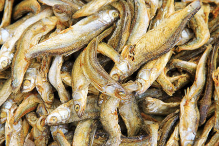 aquatic products: Dried fish, closeup of photo