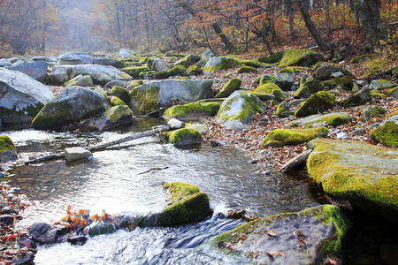 scour: rock and creek in a geological park, closeup of photo