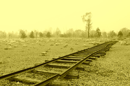 rail track: TANGSHAN CITY - NOVEMBER 16: The rail track damaged by the earthquake in the Tangshan earthquake ruins park, on november 16, 2013, tangshan city, hebei province, China. Stock Photo