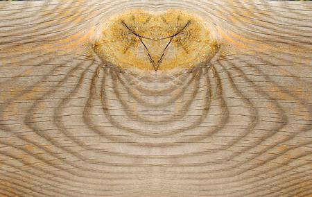 erosion: Wood texture, closeup of photo