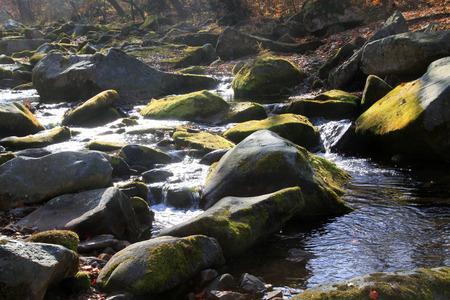 rock creek: rock and creek, closeup of photo