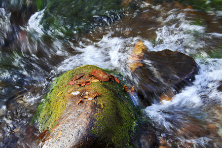 scour: rock and creek, closeup of photo