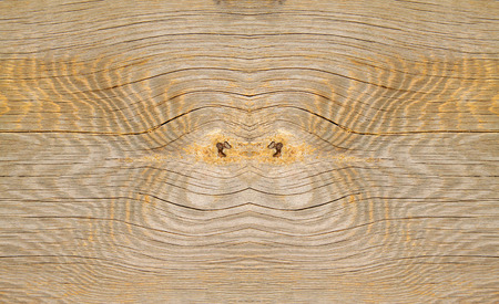 the scars: Wood texture, closeup of photo