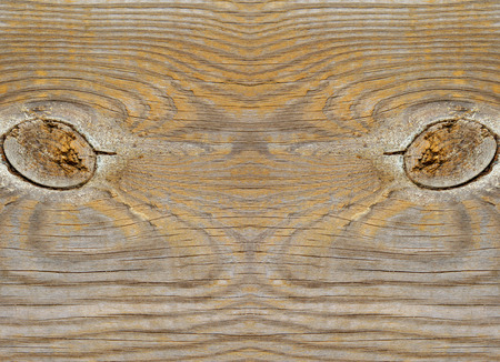 damp: Wood texture Stock Photo