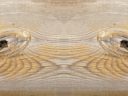 scarred: Wood texture Stock Photo