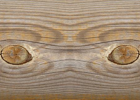 damp: Wood texture Stock Photo