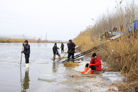 obtaining: LUANNAN COUNTY - JANUARY 24: Farmers obtaining ice from the river on January 24, 2015, Luannan County, Hebei Province, China Editorial