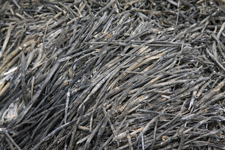 carbide: Straw ash, closeup of photo Stock Photo