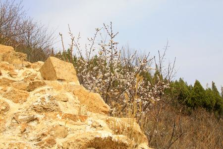 restore ancient ways: Ming Great Wall broken landscape, China