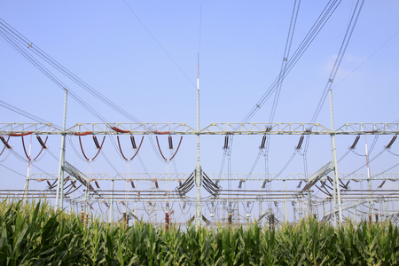 isolator insulator: Electric power equipment in substation, closeup of photo