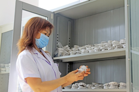 tool cabinet: Luannan - June 18: doctor observed model of the tooth in hospital, June 18, 2015, luannan county, hebei province, China