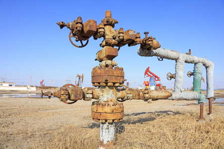 facilitated: petroleum pipeline in the wild, closeup of photo