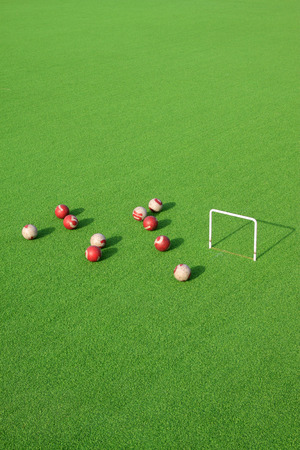 sport background: Chinese gate ball site, closeup of photo