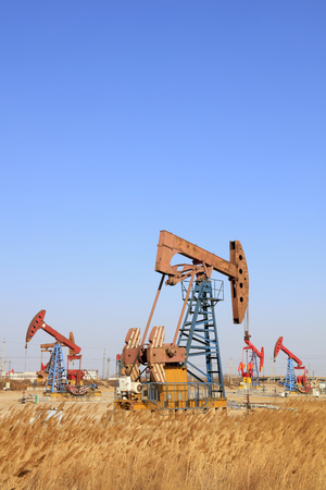 yacimiento petrolero: Pumping unit and reed under blue sky in oilfield Editorial