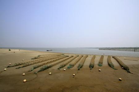 falling nets at the seaside, closeup of photo