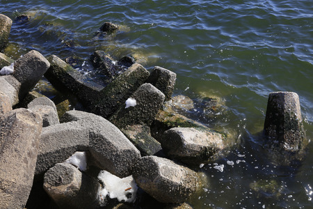breakwater: Breakwater on the shore, closeup of photo