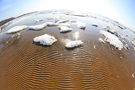 sea beach texture natural scenery, closeup of photo
