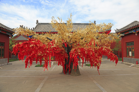 confucian: LUAN COUNTY - July 16: red prayer flag tree in Confucian temple, on July 16, 2016, Luan County, Hebei Province, China