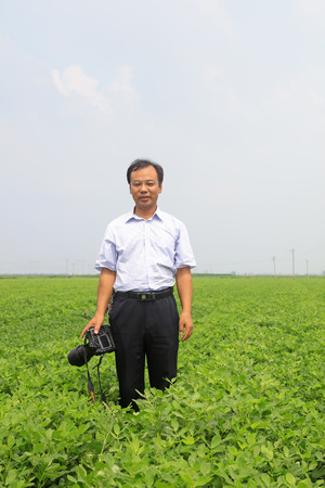 hebei: Luannan - August 2: a male photographer in the peanut field, on August 2, 2016, luannan county, hebei province, China