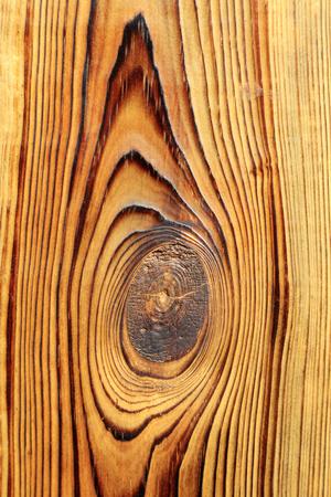 forme: grain de boisé, la forme des yeux