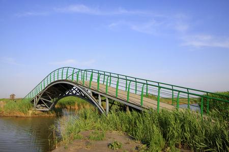 Grüner Eisen Brückengeländer Standard-Bild - 80253335