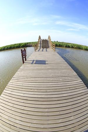 hebei: Wetland park scenery