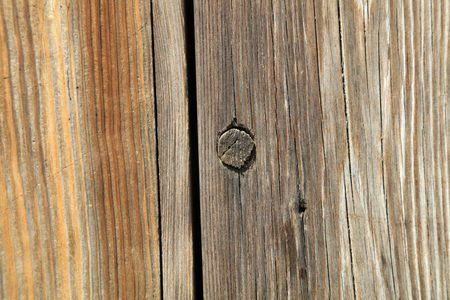 Wood texture and crevice Banco de Imagens