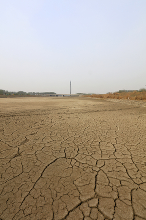Arid cracked land