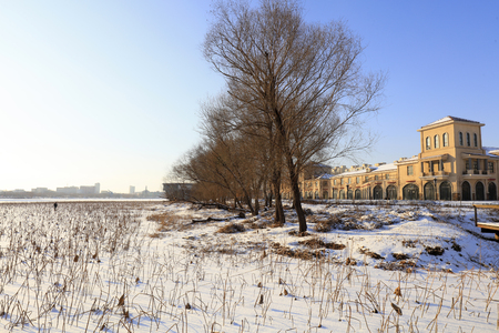 Snow scenes of urban parks in northern China Editöryel