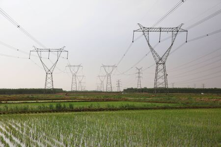 rice fields and electric towers in China Banco de Imagens