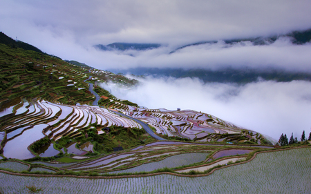 Terrace of sea of clouds