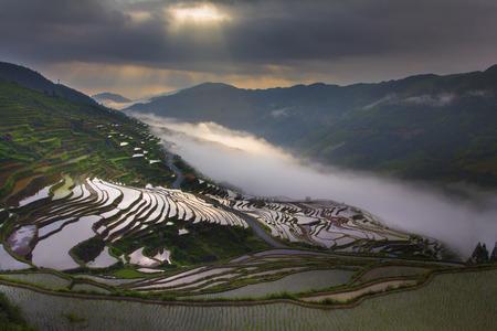 Terras met zee van wolken Stockfoto