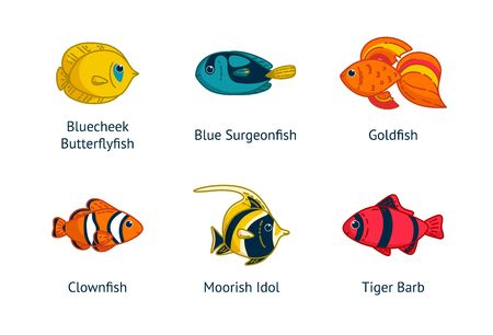Set of six tropical fishes with their names. Clownfish, goldfish, butterflyfish an others. Vector illustration in cartoon style