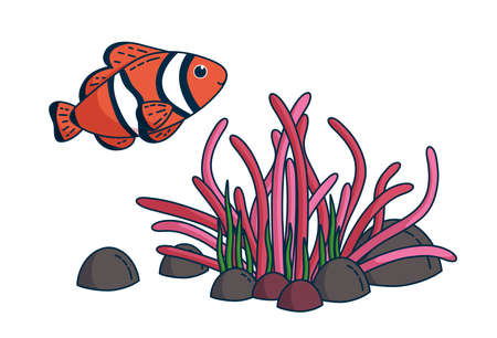 Clownfish and anemone with stones and grass. Design for kids clothes and items. Vector illustration in cute cartoon style Vectores