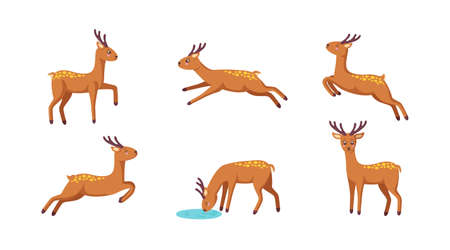 Set of cheerful reindeers. Jumping, standing, running, drinking reindeer in cute cartoon style. Isolated vector illustration