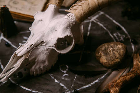 White goat scull with horns, open old book (text - untranslatable, fictional language), black candles on witch table. Occult, esoteric, divination and wicca concept. Halloween, Day of the dead concept Standard-Bild