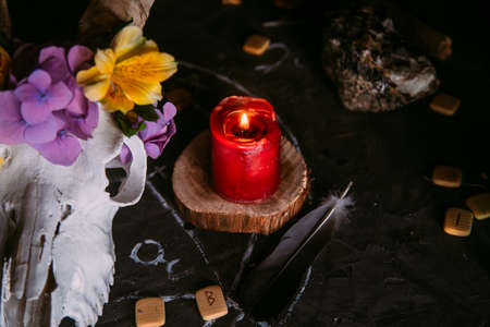 White goat scull with horns, flowers, open old book, candles on witch table. Occult, esoteric, divination and wicca concept. Halloween, Day of the dead concept Stock Photo