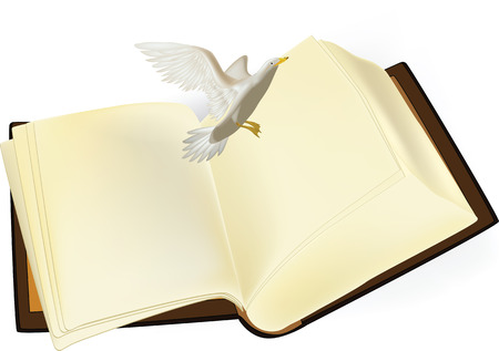 book and a seagull Vector
