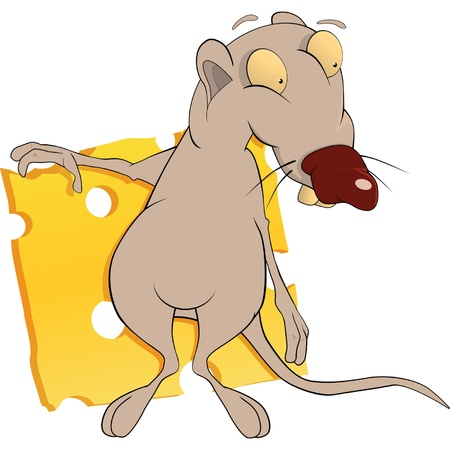 mustached: Rat and cheese. Cartoon