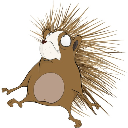 Hedgehog. Cartoon  Vector