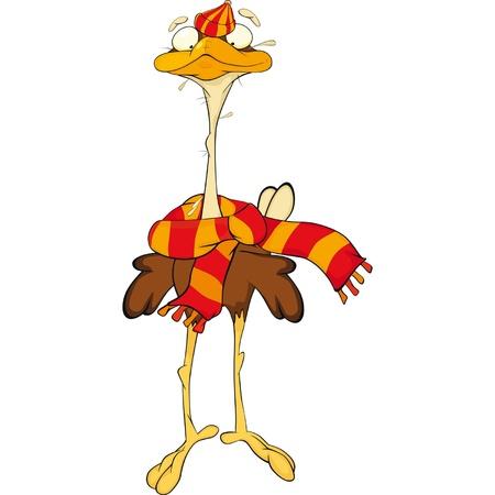 Avestruz. Dibujos animados
