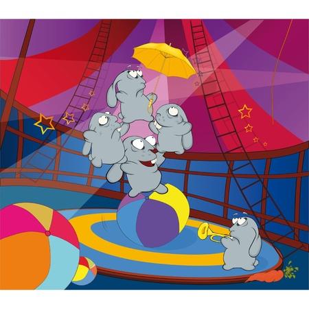 animales de circo: Conejos y el circo. Dibujos animados Vectores