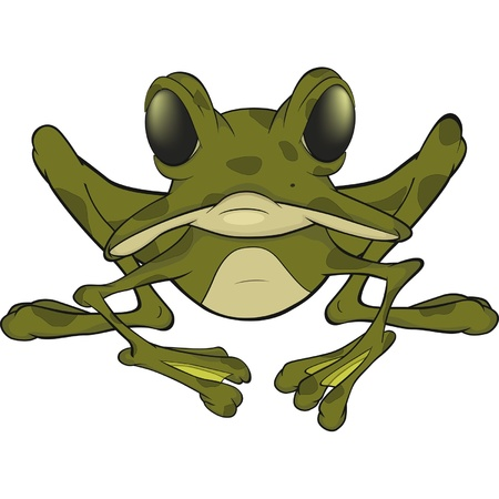 The big green frog. Cartoon  Vector
