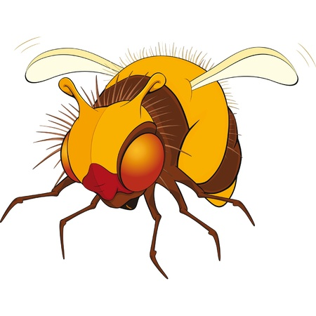 poisonous insect: Bumblebee. Cartoon