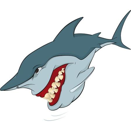 dead sea: Cheerful shark. Cartoon