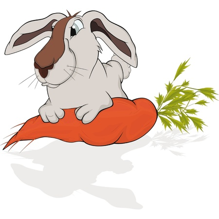 Greedy rabbit and tasty carrot. Cartoon  Stock Vector - 11819022